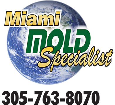 mms-logo-2